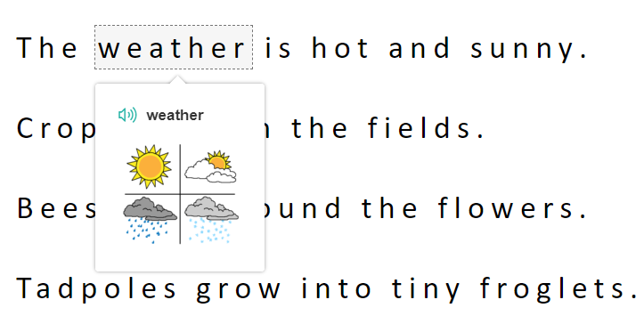 Example of Picture Dictionary and weather symbol.